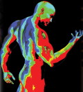 bodytemp-heat-map