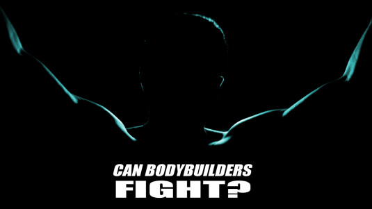 Can Bodybuilders Fight